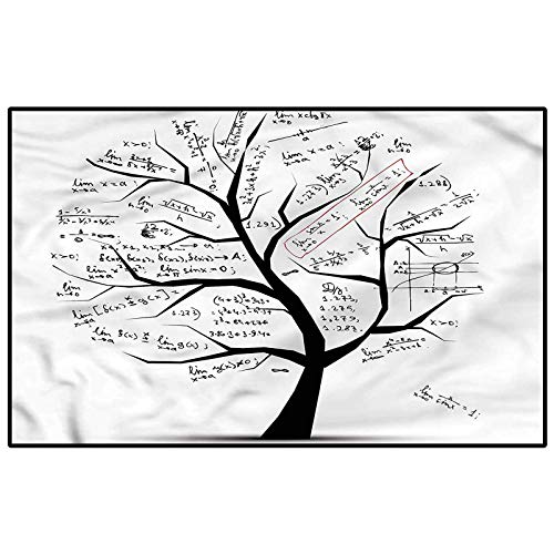 Mathematics Classroom Area Rug Tree Branches for Sofa/Living Room/Dining Room/Bedroom Modern Home Decoration 2 x 3 Ft