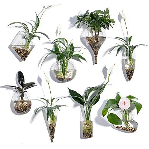Juego de 8 macetas de pared geométricos, terrarios, macetas de interior, jarrón de pared, mini acuario para decoración de pared