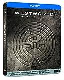 51vPn4Bi3 L. SL160  - Westworld Saison 2 : Un acteur de Vikings devient un régulier du parc