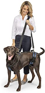 Solvit Dog Lifting Aid Mobility Harness (Black, Large)