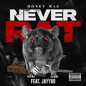Never Rat (feat. Jayybo)