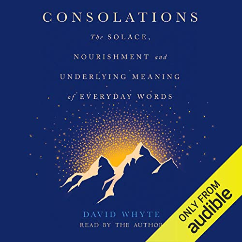 Consolations  By  cover art