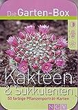 Die Garten-Box Kakteen & Sukkulenten 50 Pflanzenporträt-Karten