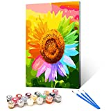 Ginkko Paint by Numbers for Adults Kids Beginners with Wooden Frame Easy Acrylic on Canvas 9x12 inch with Paints and Brushes, Colorful Sunflower(Include Framed)