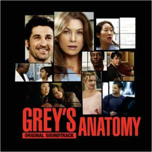 Grey's Anatomy Volume 1:Origin