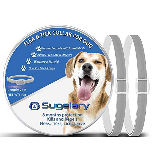Collar Antiparasitario para Perro, Protección de 8 Meses Collar Antiparasitario de Perro Impermeable Ajustable Collar de Pulgas para Perros Mejorado con Aceites Esenciales Naturales