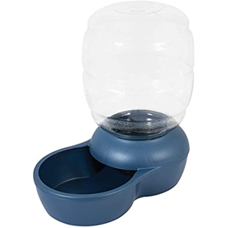 Petmate Replendish Gravity Waterer With Microban for Cats and Dogs, 1 Gallon