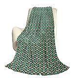 Geometric Fluffy Plush Soft Comfortable Warm Blanket Patrón de Espiga con Rayas en ángulo y Rombos Triángulos Aire Acondicionado de Lujo Funda nórdica W80 x L60 Inch Vermilion Fern