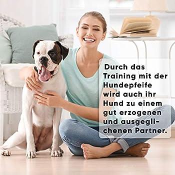 Aribari 2 x sifflets professionnels pour l'éducation et le dressage des chiens – fréquence réglable - pour l´entraînement et rappel des chiens - matière: laiton, couleur: argent
