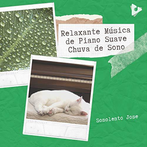 Piano Relajante clásicos para perros