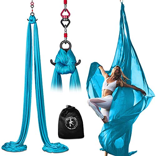 Professional 11 Yards Aerial Silks Equipment for All Levels - Medium Stretch Aerial Yoga Swing & Hammock Kit - Perfect for Indoor Outdoor Aerial Dance, Circus Arts – ALL Hardware Included (Sky Blue)