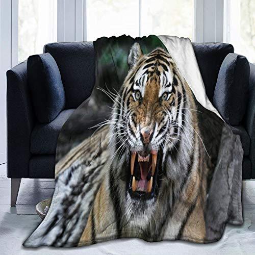 CANCAKA Manta,Cara de Tigre con Rugido Safari de Vida Silvestre Savannah Animal Naturaleza Zoológico Foto,Súper Suave y Cálida Mantas de Microfibra para Cama,sofá,Dormitorio 125x150 cm
