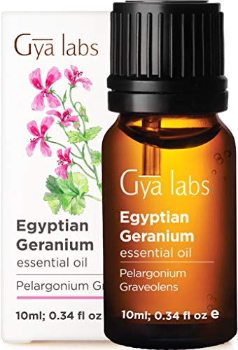 Gya Labs Egyptian Geranium Essential Oil for Skin Care  Topical for Mature Skin and Breakouts  Diffuse for Stress Relief and Sleep  100 Pure Therapeutic Grade Geranium Oil for Aromatherapy  10ml