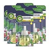 Air Wick - Set di 6 ricariche di oli essenziali per profumare gli ambienti con oli essenziali