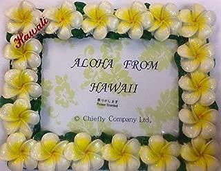 White plumeria Hawaiian Flower Picture Frame 5