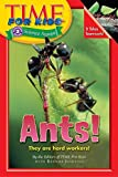 Time for Kids: Ants, by the editors of Time for Kids with Brenda Iasevoli