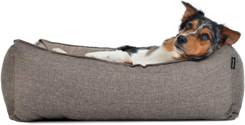 Cani letto, cani divano Dogstyle dreamcoll ection Softline poliestere in crema 4misure, impermeabile, resistente tuttie sbavature