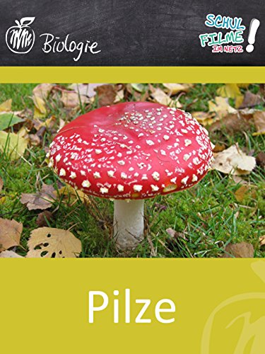 Pilze - Schulfilm Biologie