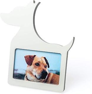 Amazon.es: perro forma