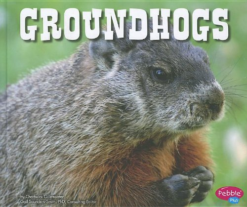 Groundhogs (North American Animals)