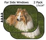 MSD Car Sun Shade - Side Window Sunshade Universal Fit 2 Pack - Block Sun Glare, UV and Heat for Baby and Pet - Shetland Sheepdog Image 37238739 Customized Tablemats Stain Resistance Collec