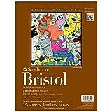 Strathmore 400 Series Bristol, 2-Ply Vellum, 11'x14' Tape Bound, 15 Sheets
