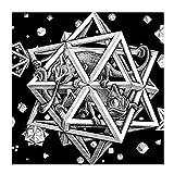 chtshjdtb MC Escher Optische Täuschung Kunstwerke