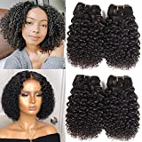 Peenoll Kinky Curly Human Hair Bundles 4 Bundles Deals 10 Inch 50G/Pc Jerry Curly Brazilian Hair Weave Unprocessed Natural Color Virgin Kinky Curly Hair Extensions