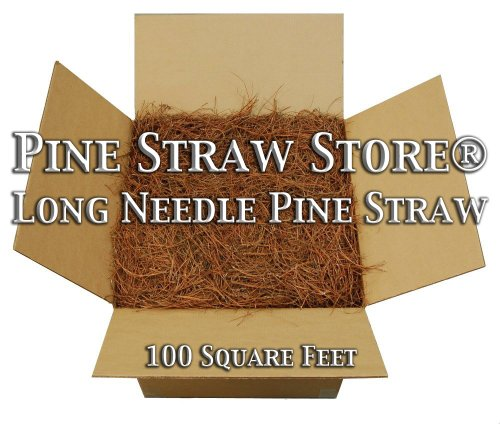 Pine Straw Mulch - Pine Needle Mulch - 200SqFt - 14 Inch Pine Mulch …