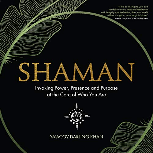 Shaman  By  cover art