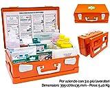 ONFARMA FARMA 2 Cassetta Medica Primo Pronto Soccorso Conforme DM 388 Allegato 1 per aziende con 3 o più Lavoratori Completa di Cartello Primo Soccorso