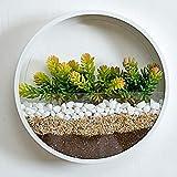 RRSHUN - Maceta de pared redonda de cristal, jarrón de pared de metal con forma redonda, para interiores, vertical, para colgar en la pared, de 20 x 20 x 5 cm