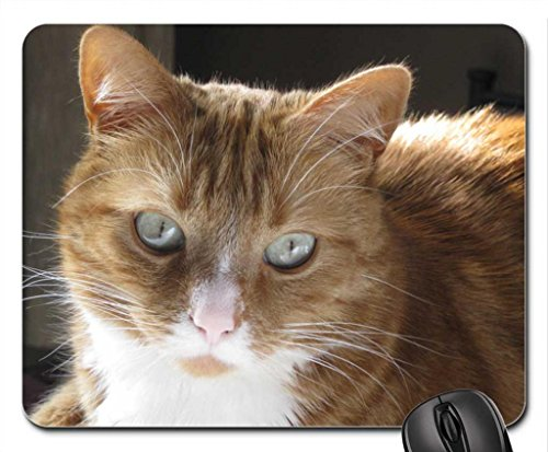 My Lovely Twigs Mouse Pad, souris (Cats Mouse Pad)
