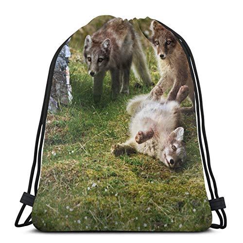 Perfect household goods Grass Mountains Game Group Arctic Foxes Rucksack mit Kordelzug, leicht, für Fitnessstudio, Reisen, Yoga, Freizeit, Snackpack, Schultertasche für Wandern, Schwimmen, Strand