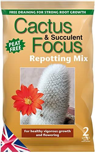 Growth Technology MDCAF2 Cactus Fokus Umtopfen Mix, 2 Liter