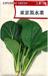 東京黒水菜小松菜 在来種固定種野菜のタネ
