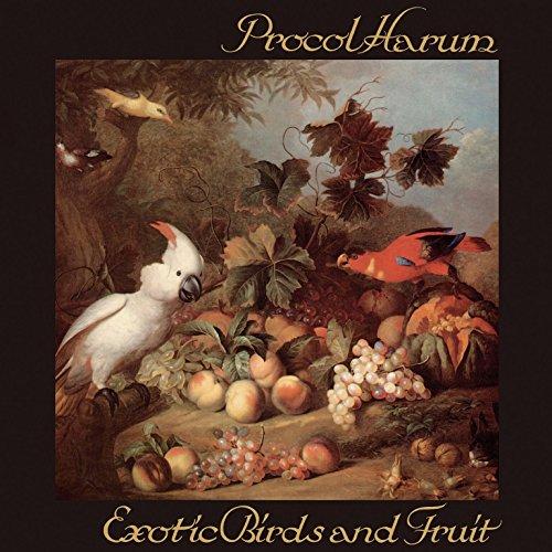 professionnel comparateur Oiseaux et fruits exotiques choix