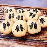 【昆虫食クッキー④】 食用コオロギ2匹まるごと コオロギクッキー