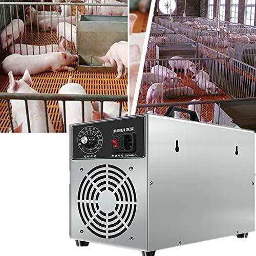 Rhww Generador De Ozono Comercial 3G / H Alta Capacidad Purificador De Aire Ionizadores De Aire Caseros Desodorizador De Filtro De Aire para Habitaciones, Fumar, Carros Y Mascotas