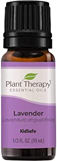 Plant Therapy Essential Oil - Lavender for Unisex - 0.33 oz Essential Oil