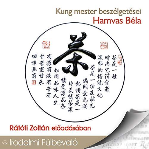 Kung mester beszélgetései audiobook cover art