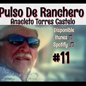 Pulso de Ranchero