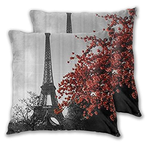 LOSUMIGE 2 Pack Funda de Almohada Paris Eiffel Tower Cityscape Red Flower Lino Suave Cuadrado Sofá Cama Decoración Hogar para Cojín 60cm x 60cm