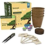 Bonsai Starter Kit - The Complete Growing Kit to Easily Grow 4 Bonsai Trees from Seed + Comprehensive Guide & Bamboo… 11 Everything needed to grow 4 beautiful bonsai trees - in one sleek box: Contains 4 types of seeds (Rocky Mountain Bristlecone Pine, Black Poui, Norway Spruce, and Flame Tree) stored in seed-safe vials for better germination, 4 biodegradable growing pots, 1 expanding-soil disc, 4 bamboo plant markers, 1 bonsai clipper and a beautiful, comprehensive and simple instruction booklet. #1 growth performance: Our rating speaks for itself! Planter's Choice is the only brand that stores the seeds in our seed-safe vials to ensure proper germination. The perfect diy gift: For mom, dad, him or her, this is the perfect gift to give on birthdays, anniversaries, holidays, housewarming, or any other occasion — ideal for beginners, masters, and children alike. See the excitement in their eyes as they experience growing indoor bonsai trees.