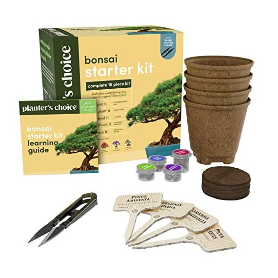 Bonsai Starter Kit - The Complete Growing Kit to Easily Grow 4 Bonsai Trees from Seed + Comprehensive Guide & Bamboo… 4 Everything needed to grow 4 beautiful bonsai trees - in one sleek box: Contains 4 types of seeds (Rocky Mountain Bristlecone Pine, Black Poui, Norway Spruce, and Flame Tree) stored in seed-safe vials for better germination, 4 biodegradable growing pots, 1 expanding-soil disc, 4 bamboo plant markers, 1 bonsai clipper and a beautiful, comprehensive and simple instruction booklet. #1 growth performance: Our rating speaks for itself! Planter's Choice is the only brand that stores the seeds in our seed-safe vials to ensure proper germination. The perfect diy gift: For mom, dad, him or her, this is the perfect gift to give on birthdays, anniversaries, holidays, housewarming, or any other occasion — ideal for beginners, masters, and children alike. See the excitement in their eyes as they experience growing indoor bonsai trees.