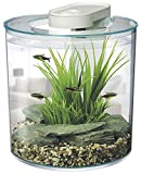 Marina 360 Degree Aquarium, 10 Litre