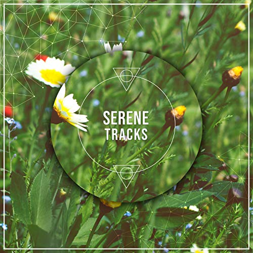 #19 Serene Tracks for Calming Yoga Workout