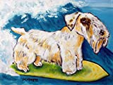 sealyham terrier surfing