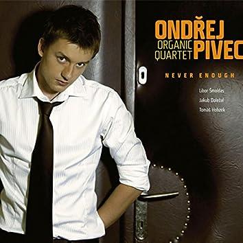 Never Enough (feat. Ondřej Pivec, Libor Šmoldas, Jakub Doležal, Tomáš Hobzek)
