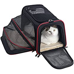 Best Cat Carriers In The Uk